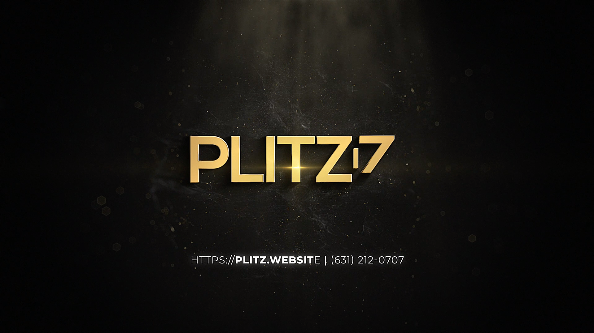 Plitz Corporation, web company